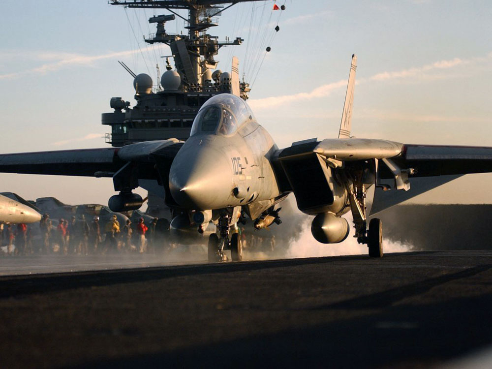 Истребитель F-14 Tomcat (Томкэт)